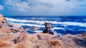 Oceano contro le scogliere che alloggiano le colonie di sula in spiaggia di Muriwai immagini stock libere da diritti