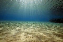 Oceano, coral e peixes imagens de stock