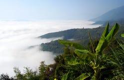 Oceano da névoa Fotos de Stock