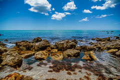 Oceano da praia de Veneza Foto de Stock