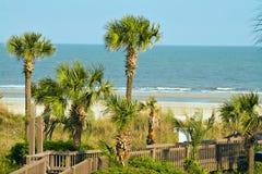Oceano das palmas da areia Fotos de Stock Royalty Free