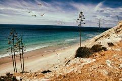 Oceano de Portugal fotografia de stock royalty free