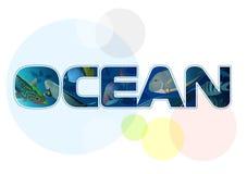 Oceano dell'iscrizione con il pesce Immagine Stock