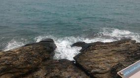 Oceano di nuova vita Fotografia Stock