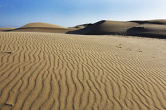 Oceano Dunes Natural Preserve, California Stock Photo