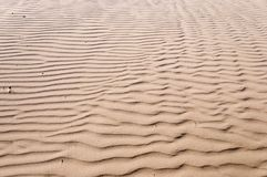 Oceano Dunes State Vehicular Recreation Area Royalty Free Stock Photography