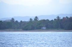 Oceano e árvores Fotografia de Stock Royalty Free