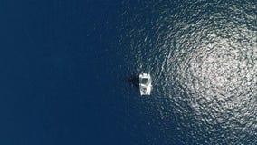 Oceano e barca a vela puliti blu stock footage