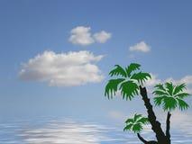 Oceano e céu da palma ilustração do vetor