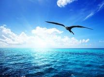Oceano e céu perfeito Foto de Stock Royalty Free