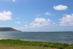 Oceano e cieli blu dell'erba verde Immagini Stock Libere da Diritti