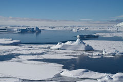 Oceano e iceberg congelados perto da península antártica, um inverno Fotos de Stock