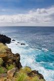 Oceano e a linha da costa de ilha grande, Havaí Imagens de Stock