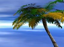 Oceano e palma Imagem de Stock