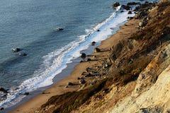 Oceano e spiaggia di Pacifc al tramonto Fotografie Stock Libere da Diritti