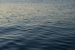 Oceano em Noruega Foto de Stock