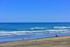 Oceano em Nova Zelândia Fotos de Stock Royalty Free