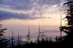 Oceano, isole, nuvole e siluette degli alberi ad alba Fotografie Stock Libere da Diritti
