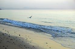 Oceano La spuma corrente ondeggia sulla spiaggia Nelle prime ore del mattino alcuni minuti prima di alba Fotografia Stock Libera da Diritti