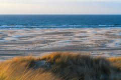 Oceano, mudflat, duna fotografia de stock royalty free