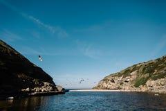 Oceano nel Portogallo Fotografia Stock