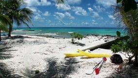Oceano no fundo da canoa amarela brilhante sob palmeiras na praia video estoque