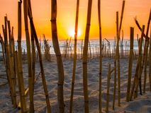 Oceano Pacifico dell'amante della spiaggia di tramonto immagine stock