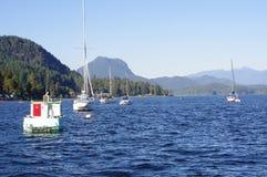 Oceano Pacifico e le montagne Immagini Stock