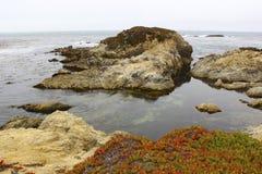 Oceano Pacifico fogliame-roccioso rosso Immagini Stock Libere da Diritti