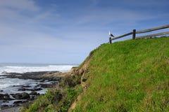 Oceano Pacifico nell'Oregon fotografia stock libera da diritti