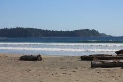 Oceano Pacifico rivolto a Nord del sud della spiaggia Fotografia Stock Libera da Diritti