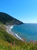 Oceano Pacifico Shoreline, costa dell'Oregon Fotografie Stock Libere da Diritti