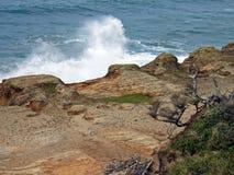 Oceano Pacifico Wave che si schianta nella riva Immagini Stock Libere da Diritti