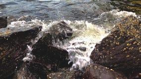 Oceano schianto di Wave e spiaggia colpita della roccia Le onde di rottura si precipitano su Rocky Seashore Acqua che spruzza sul video d archivio