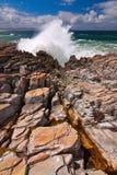Oceano selvagem Imagens de Stock