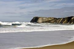 Oceano selvagem com ondas Fotografia de Stock Royalty Free
