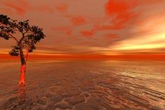 Oceano straniero rosso con solitario Fotografia Stock