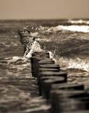 Oceano tempestoso nella seppia fotografia stock libera da diritti