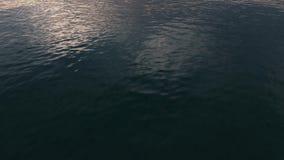 Oceano U.S.A., Florida della costa Immagine Stock