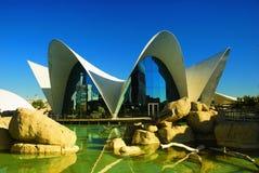 Oceanografic Aquarium, Valencia. Stock Images
