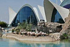 Oceanografic en Valencia Foto de archivo libre de regalías