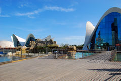 Oceanografic i Valencia, Spanien Royaltyfria Bilder