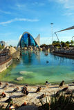 Oceanografic i Valencia, Spanien Royaltyfri Foto