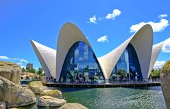 Oceanografic modern arkitektur, Valencia, Spanien arkivfoton