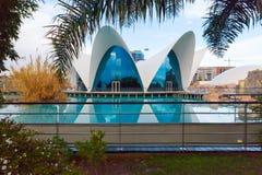 Oceanografic utomhus- sikt på staden av konster och vetenskap Valencia royaltyfria foton