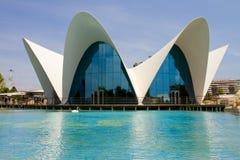 Oceanografic, Valencia Royalty Free Stock Images