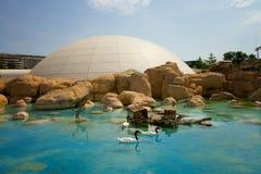 Oceanografic, Valencia Royalty Free Stock Image