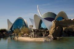 Oceanograficzny parkowy Walencja Obrazy Royalty Free
