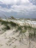 Oceans of Grass. Ocean viewed through beach Stock Photo