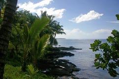 oceanscape西部的萨摩亚 免版税库存照片